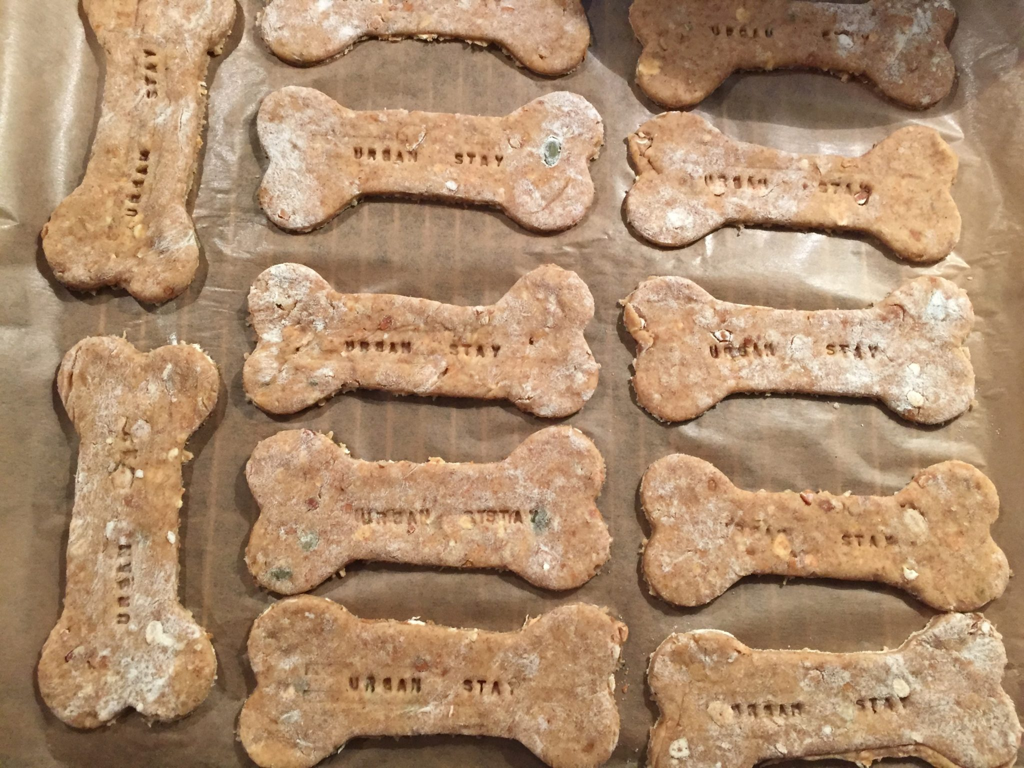 Urban Stay Dog Friendly Apartments London Offers Homebaked Customised Personalised Dog Biscuits