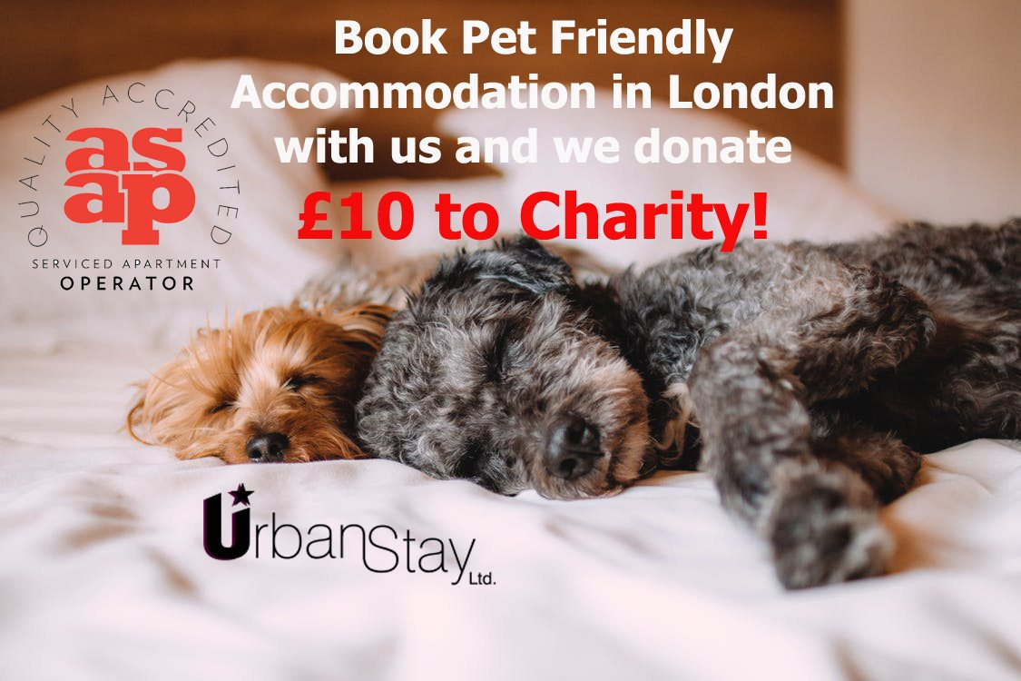 Pet Friendly Accommodation London Pet Friendly Serviced Apartments London Uk Urban Stay2