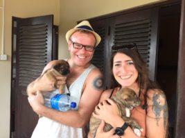 Urban Stay Pet Friendly Accommodation London Supports Animal Charities Worldwide 2