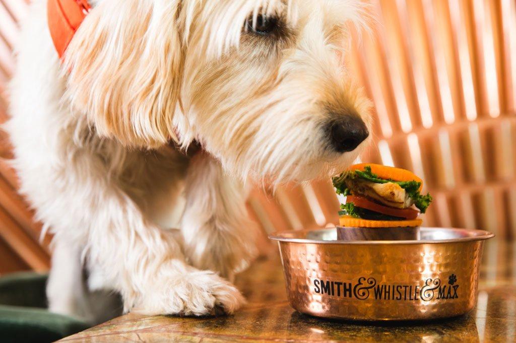 Dog Burgers 036